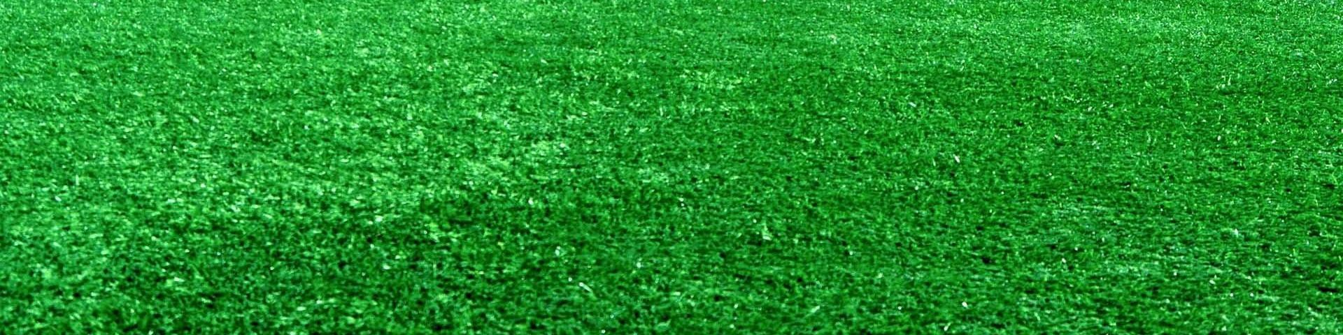 A close-up of the grass on a football pitch.